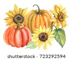 Sunflowers And Pumpkins...
