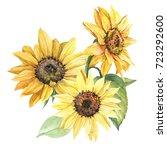 sunflower illustration in... | Shutterstock . vector #723292600