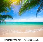 palm and tropical beach | Shutterstock . vector #723308068