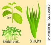 vegetarian superfood healthy... | Shutterstock .eps vector #723360550