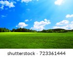 field with green grass and sun. | Shutterstock . vector #723361444