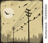 electricity poles with birds on ... | Shutterstock .eps vector #723420463