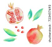pomegranate and leaves  ... | Shutterstock . vector #723457693