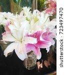 flower | Shutterstock . vector #723497470