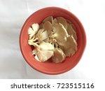 pleurotus ostreatus  the oyster ...   Shutterstock . vector #723515116
