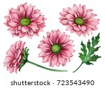 watercolor set of... | Shutterstock . vector #723543490