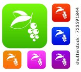 currant berries set icon color... | Shutterstock .eps vector #723591844