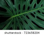 tropical green leaf pattern on... | Shutterstock . vector #723658204