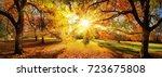 Amazing Panoramic Autumn...