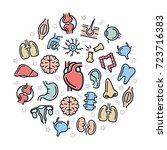 set of vector anatomy and... | Shutterstock .eps vector #723716383