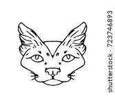 cat vector illustration. doodle ... | Shutterstock .eps vector #723746893