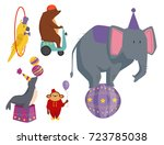 circus funny animals vector... | Shutterstock .eps vector #723785038