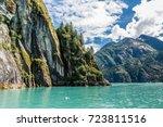 pine trees climb upward along a ... | Shutterstock . vector #723811516