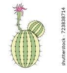 cactus | Shutterstock .eps vector #723838714