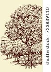 aged autumn biblical scenic... | Shutterstock .eps vector #723839110