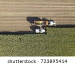 Machines Harvesting Corn In Th...