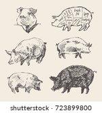 hand drawn vector illustrations ... | Shutterstock .eps vector #723899800