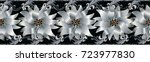 3d flowers seamless border.... | Shutterstock .eps vector #723977830