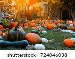 Pumpkins For Sale. American...