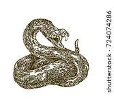 shot snake. vector illustration.... | Shutterstock .eps vector #724074286