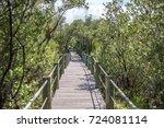mangrove boardwalk through the... | Shutterstock . vector #724081114