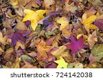 fall  autumn leaves form a... | Shutterstock . vector #724142038