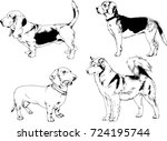 vector drawings of purebred dog ... | Shutterstock .eps vector #724195744