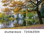 beautifull scenery in autumn... | Shutterstock . vector #724363504