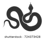 snake outline illustration.... | Shutterstock .eps vector #724373428