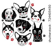 vector hand drawn dogs set... | Shutterstock .eps vector #724405450