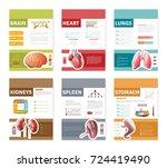 small colorful internal human... | Shutterstock . vector #724419490