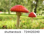 red mushroom with white spots... | Shutterstock . vector #724420240