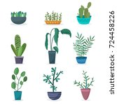 house plants and flowers in... | Shutterstock .eps vector #724458226