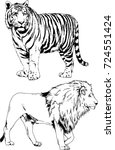 set of vector drawings on the... | Shutterstock .eps vector #724551424