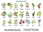 best herbal remedies for... | Shutterstock .eps vector #724579246