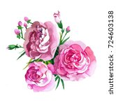 3 pink roses watercolor hand... | Shutterstock . vector #724603138