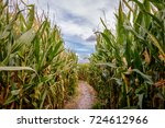A Corn Maze Or Maize Maze Is A...