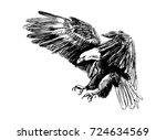 hand sketch of a flying eagle.... | Shutterstock .eps vector #724634569