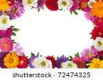 Colorful Aster Floral Frame...