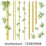 bamboo stems and leaves on... | Shutterstock .eps vector #724829848