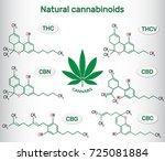 chemical formulas of natural... | Shutterstock .eps vector #725081884