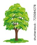 vector drawing of maple tree.... | Shutterstock .eps vector #725084278