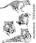 theme of predators. vector set... | Shutterstock .eps vector #725216260