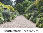 traditional english garden path. | Shutterstock . vector #725264974