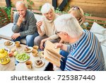 group of joyful senior friends... | Shutterstock . vector #725387440