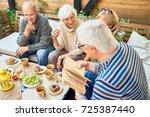 group of joyful senior friends... | Shutterstock . vector #725387440