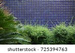 Mosaic Tiles And Green Plant O...