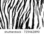 Background Texture Tiger Strip...