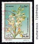 algeria   circa 2000  a stamp...   Shutterstock . vector #725494606