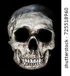 skull image great spooky image...   Shutterstock . vector #725518960